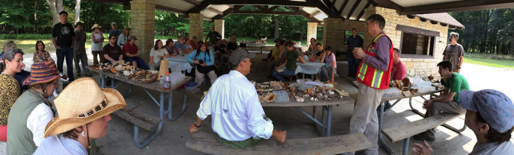 People at annual foray learning about mushrooms